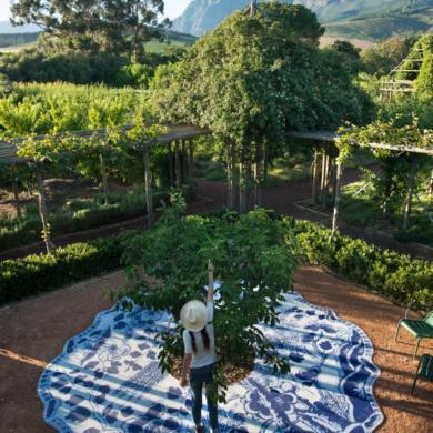Die voordele van tuinmaak vir jou geestesgesondheid