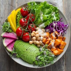 plantgebaseerde dieet
